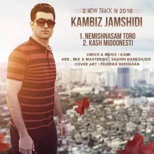 Kambiz Jamshidi – Nemishnasam Toro