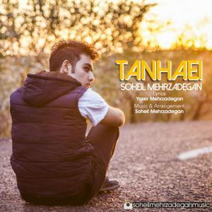 Soheil Mehrzadegan – Tanhaei