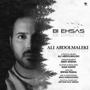 Ali Abdolmaleki – Bi Ehsas
