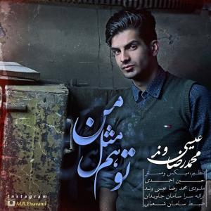 Mohammadreza Eisavand – To Ham Mesle Man