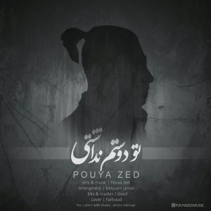 Pouya Zed – To Dostam Nadashti