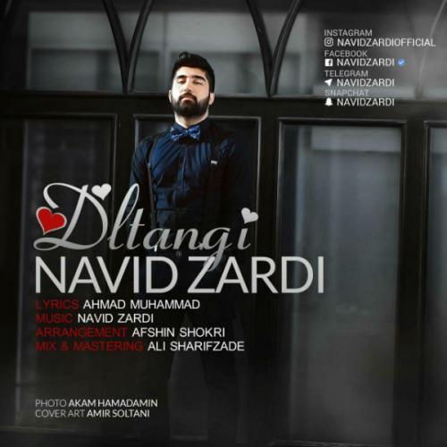 Navid Zardi – Deltangi