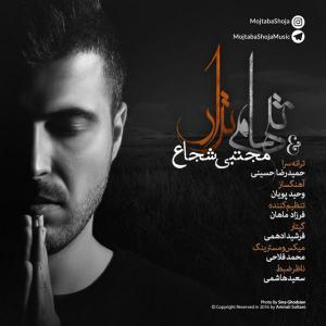 Mojtaba Shoja – Tanham Nazar