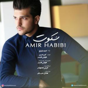 Amir Habibi – Sokoot