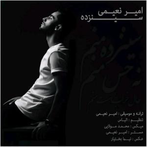 Amir Naeimi – 13