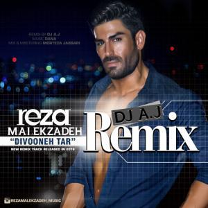 Reza Malekzadeh – Divoonetar (Remix)