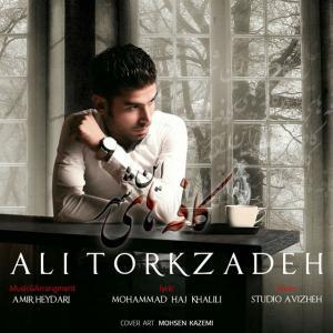 Ali Torkzadeh – Coffehaye in Shahr