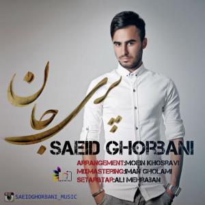 Saeid Ghorbani – Pari Jan