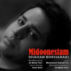 Shahab Bokharaie – Midoonestam