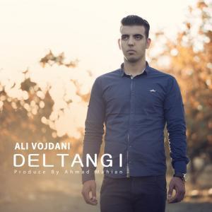 Ali Vojdani – Deltangi