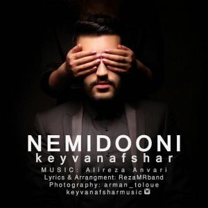Keyvan Afshar – Nemidooni