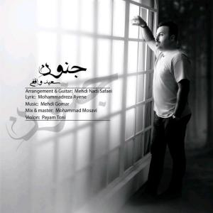 Saeed Vaghefi – Jonoon