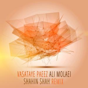 Ali Molaei – Vasataye Paeez (Remix)