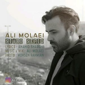 Ali Molaei – Siaho Sefid