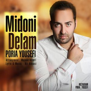 Poria Yousefi – Midoni Delam
