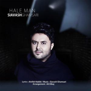 Siavash Ghamsari – Hale Man