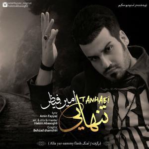 Amin Fayyaz – Tanhaei