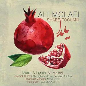 Ali Molaei – Shabe Toolani