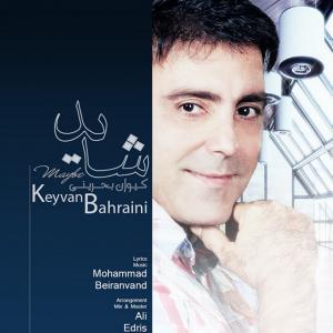 Keyvan Bahreini – Shayad