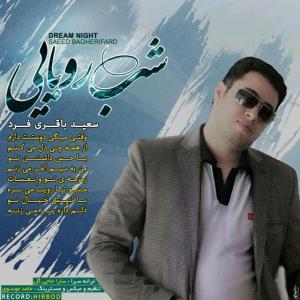 Saeed Bagheri Fard – Ye Shab Royaei