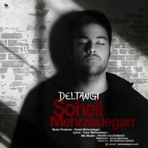 Soheil Mehrzadegan – Deltangi