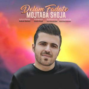 Mojtaba Shoja – Delam Fadate