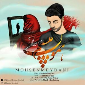 Mohsen Meydani – Hamon Misham