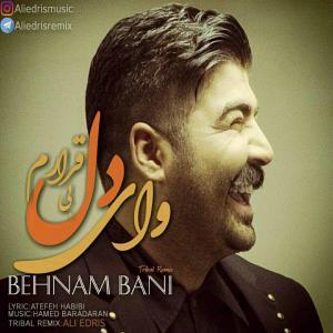 Behnam Bani – Dele Bighararam (Ali Edris Tribal Remix)