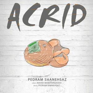 Pedram Shanehsaz – Acrid