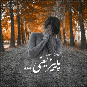 Armin Habibi – Paeez Yani