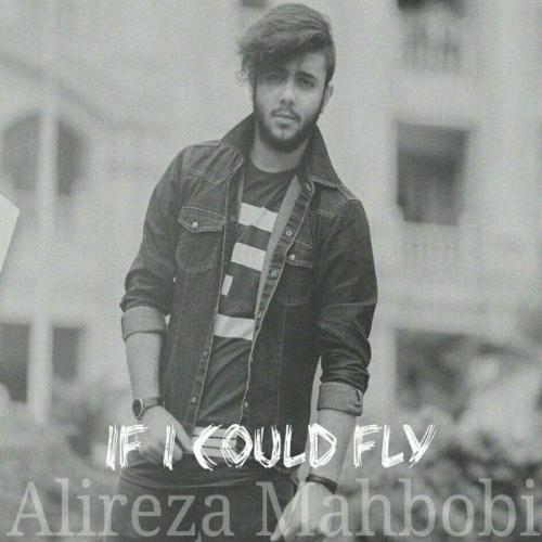 دانلود آهنگ علیرضا محبوبی If I Could Fly