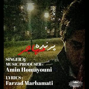 Amin Homayouni – Parandeh Mohajer