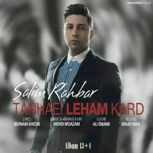 Salim Rahbar – Tanhaei Leham Kard
