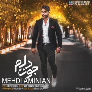 Mehdi Aminian – Joon Delam