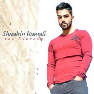 Shaahin Kamali – Toe Divoone