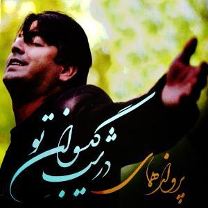 Parvaz Homay – Divane Tari