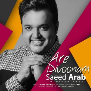 Saeed Arab – Are Divoonam