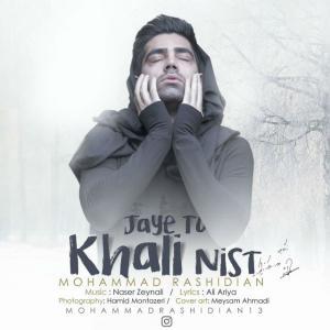 Mohammad Rashidian – Jaye To Khali Nist (Guitar Version)