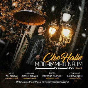 Mohammad Najm – Che Haliye