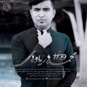 Mohammad Daryaverdi – #29