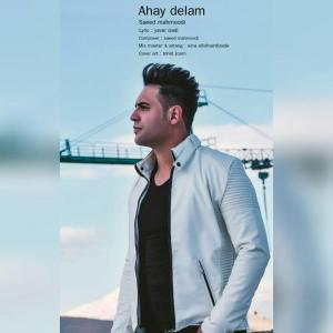 Saeed Mahmoodi – Ahay Delam