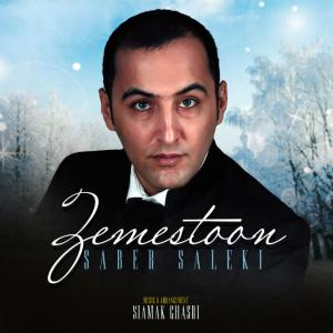 Saber Saleki – Zemestoon