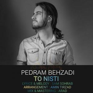 Pedram Behzadi – To Nisti