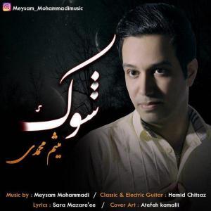 Meysam Mohammadi – Shock