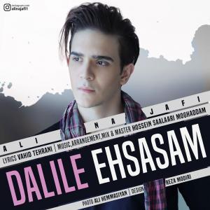 Ali Najafi – Dalile Ehsasam