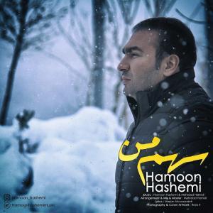 Hamoon Hashemi – Sahme Man