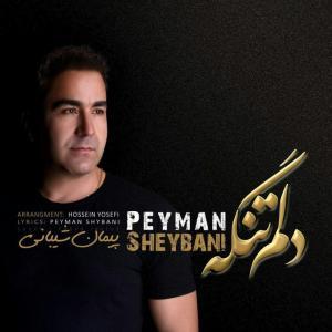 Peyman Sheybani – Delam Tange