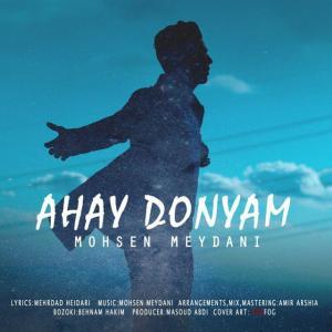 Mohsen Meydani – Ahay Donyam