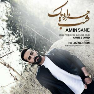 Amin Sane – Hezaro Yek Shab
