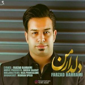 Farzad Bahrami – Deldare Man